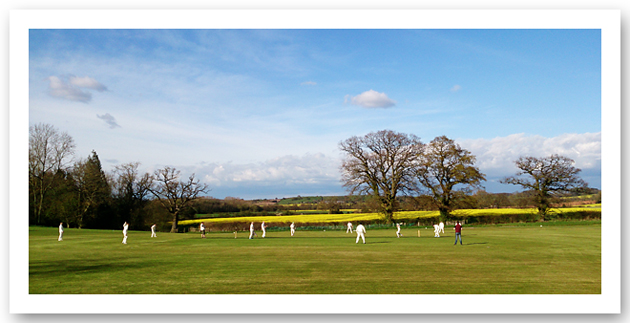 cricket, quatt, photography, shropshire